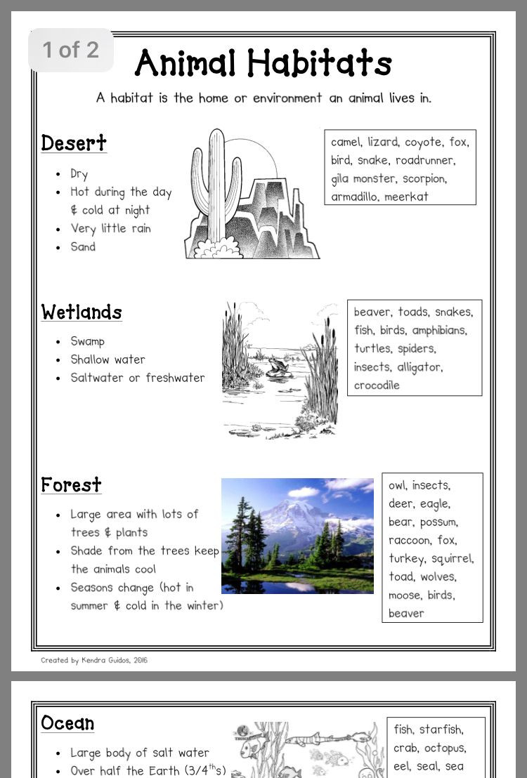 2nd Grade Habitat Worksheets Animal Habitats Worksheets Grade 1