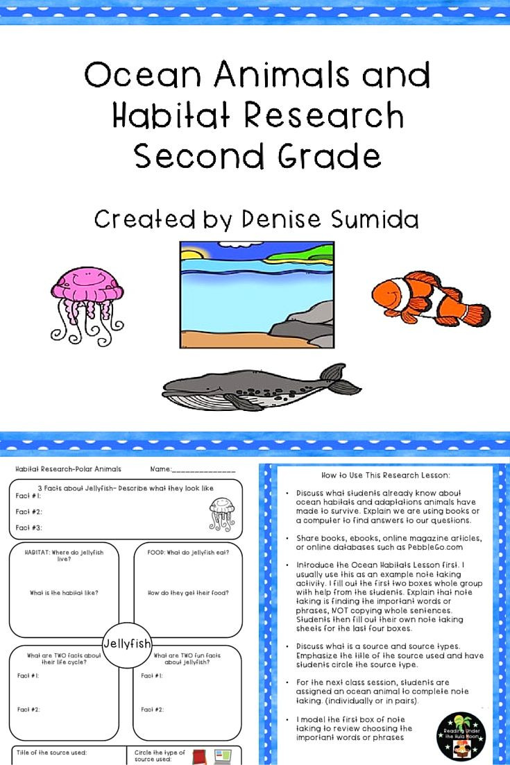 2nd Grade Habitat Worksheets Ocean Animals and Habitat Research Second Grade