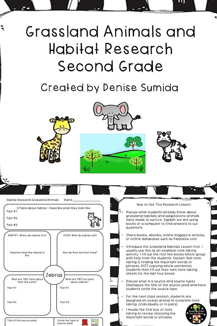 3rd Grade Habitat Worksheets Grassland Animals and Habitat Research Second Grade