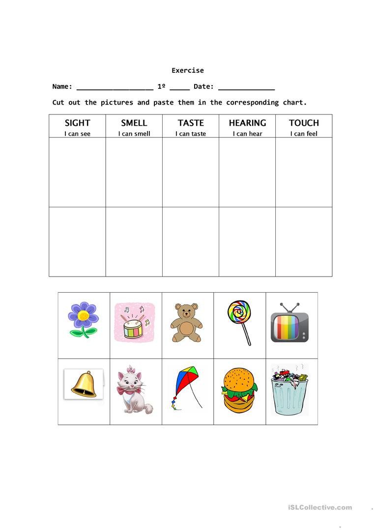5 Senses Printable Worksheets the Five Senses English Esl Worksheets for Distance