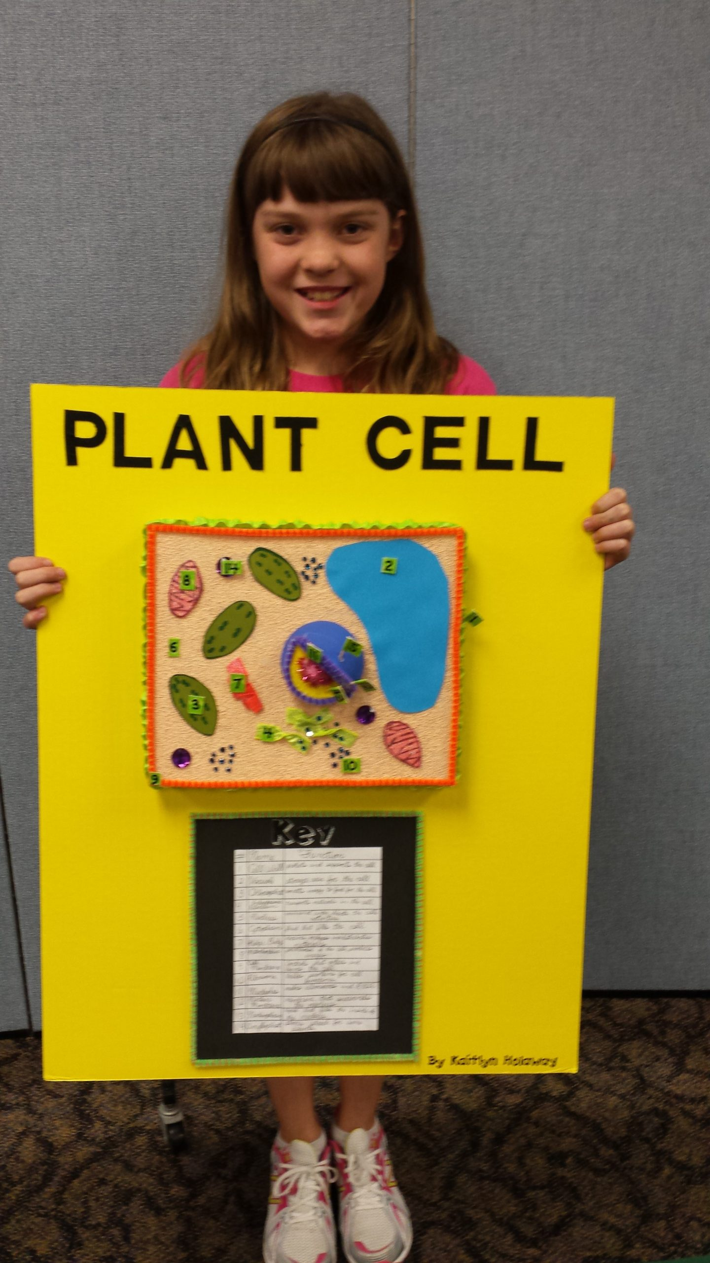 5th Grade Cell Worksheets 5th Grade Plant Cell Project Cornerstone Christian School