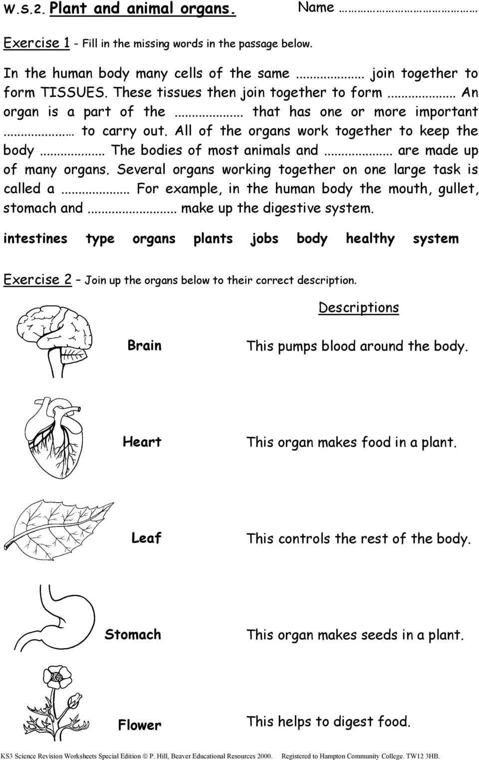 7th Grade Science Worksheets Pdf Ks3 Science Revision Worksheets Pdf Free Ks2 Special Edition