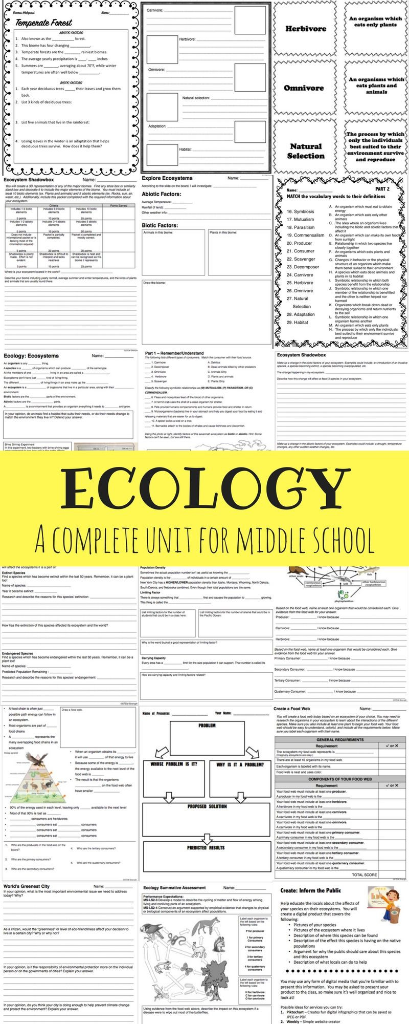 Ecology Worksheets Middle School Ecology Full Unit
