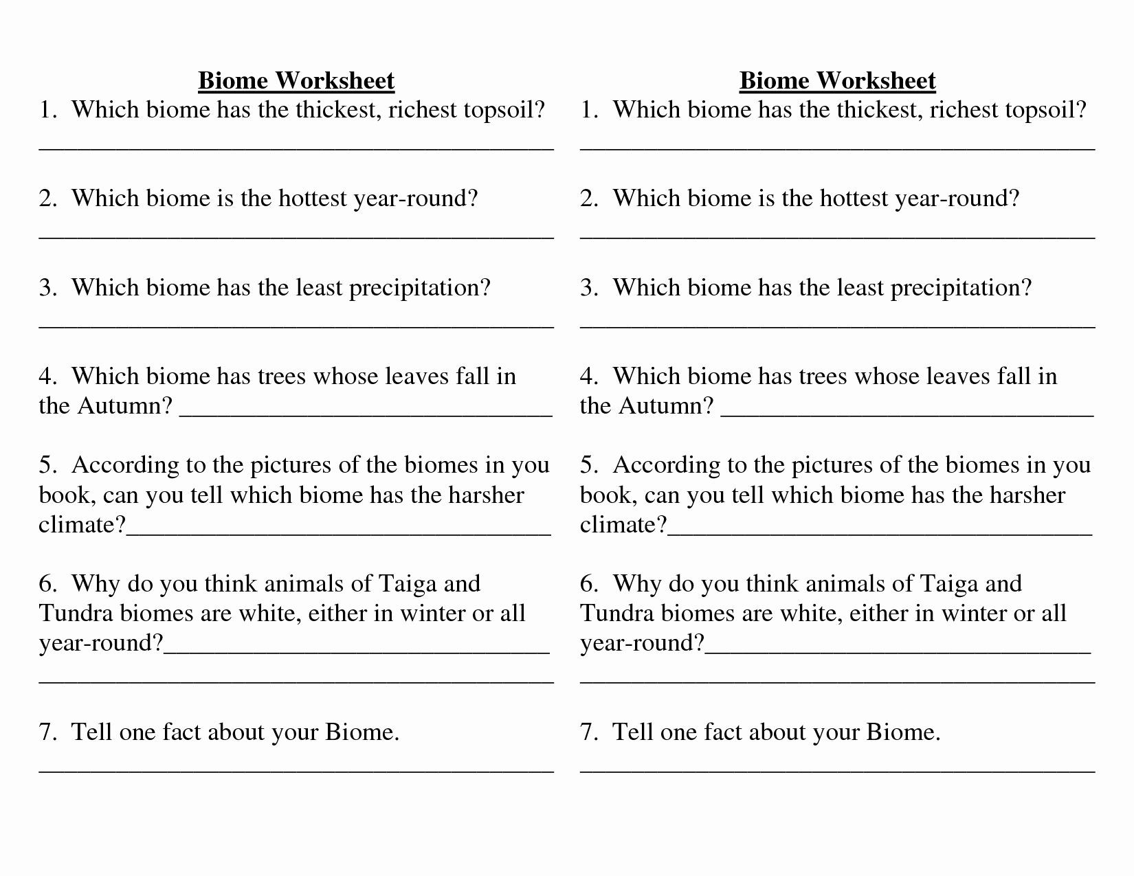 Ecology Worksheets Middle School Pin On Customize Design Worksheet Line