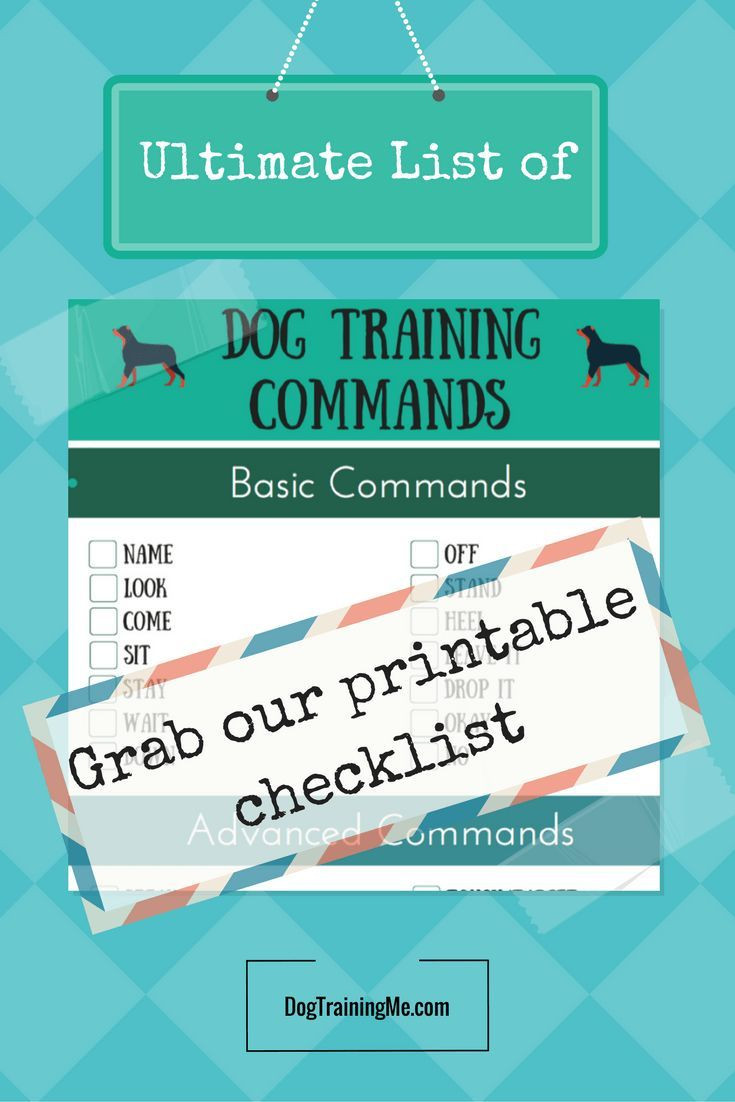 Free Printable Dog Training Worksheets Dog Mands are An Essential Part Of Your Dog S Training