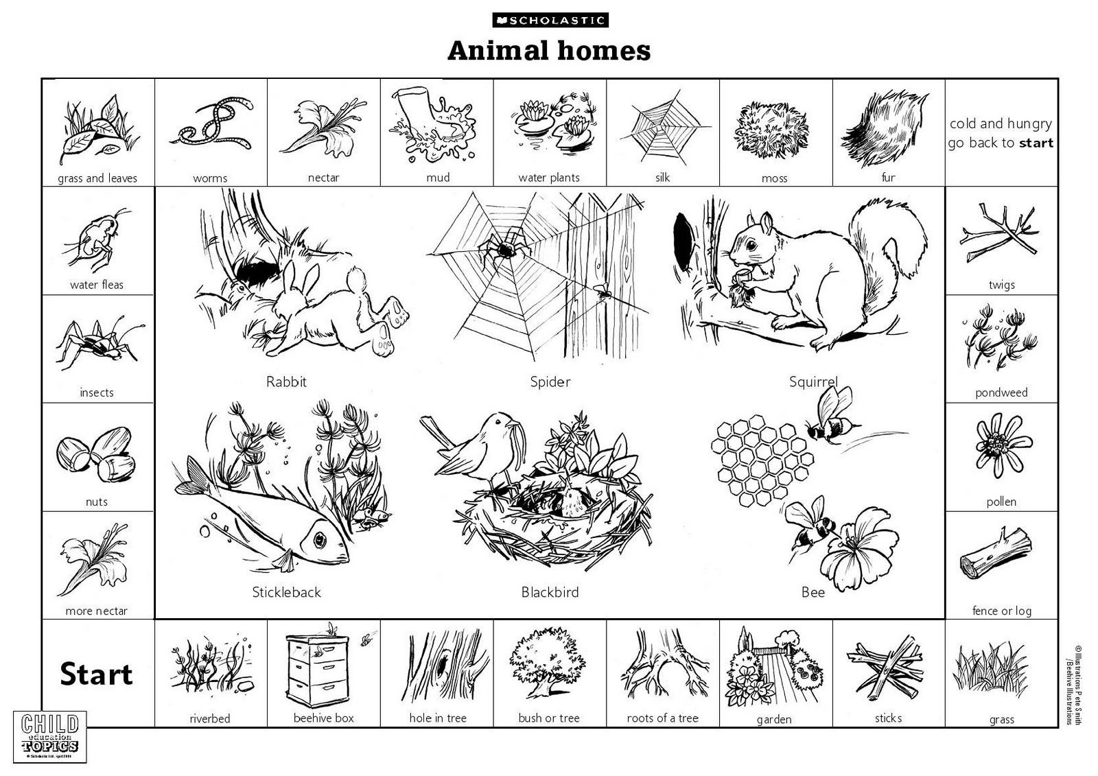 Hibernation Worksheet for Preschool Animal Habitats Printables