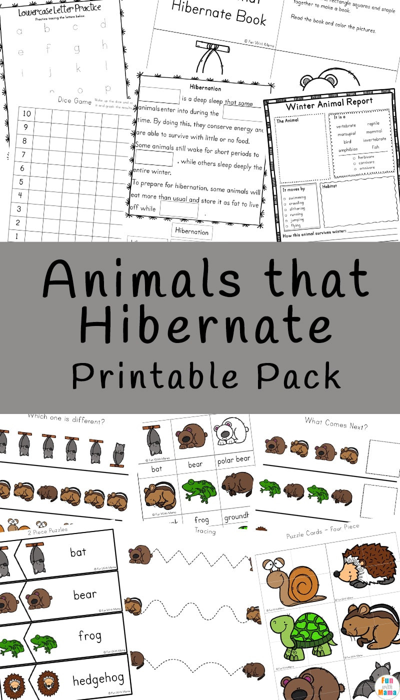 Hibernation Worksheets for Preschool Animals that Hibernate Printable Pack Fun with Mama