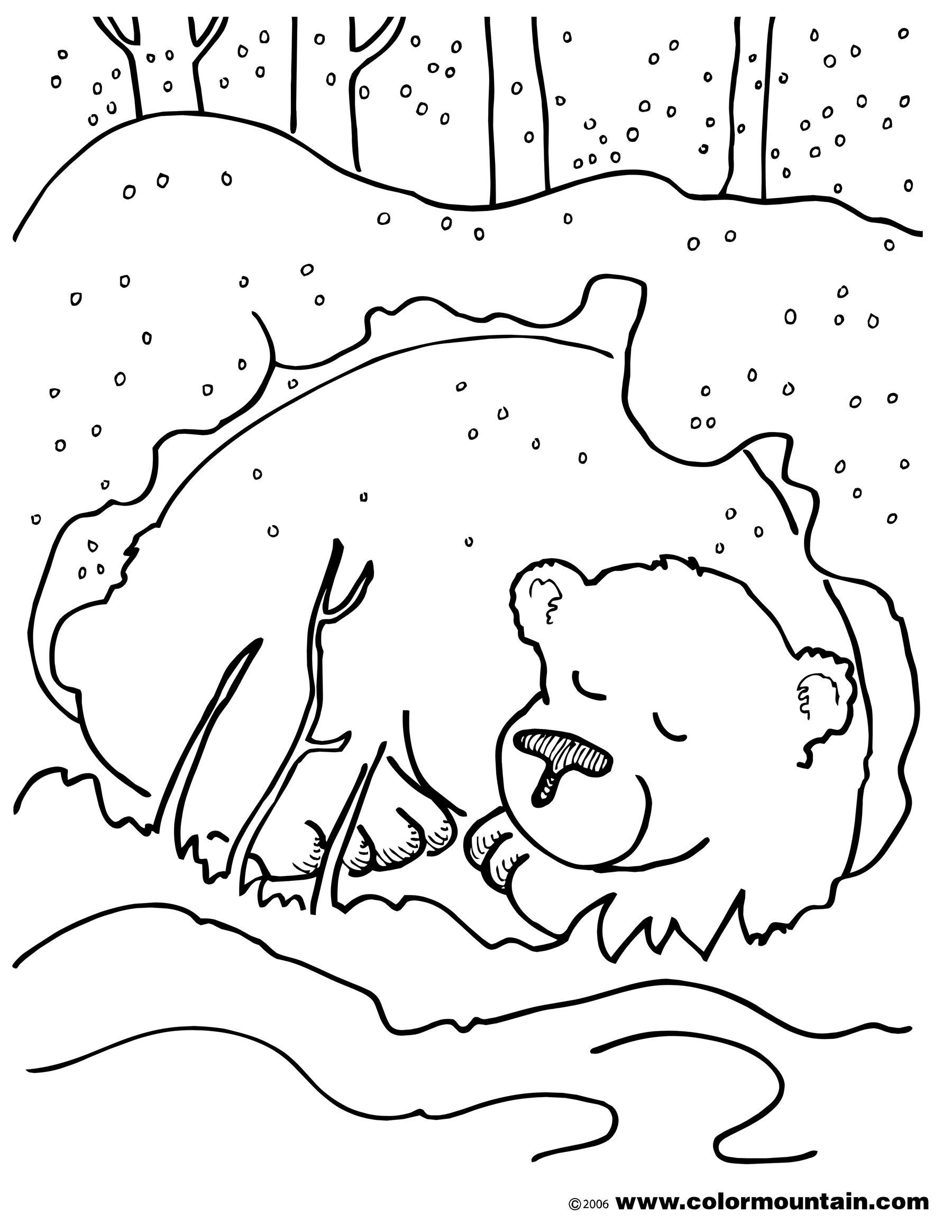 Hibernation Worksheets for Preschool Coloring Animals that Hibernate Baby Animal Worksheets