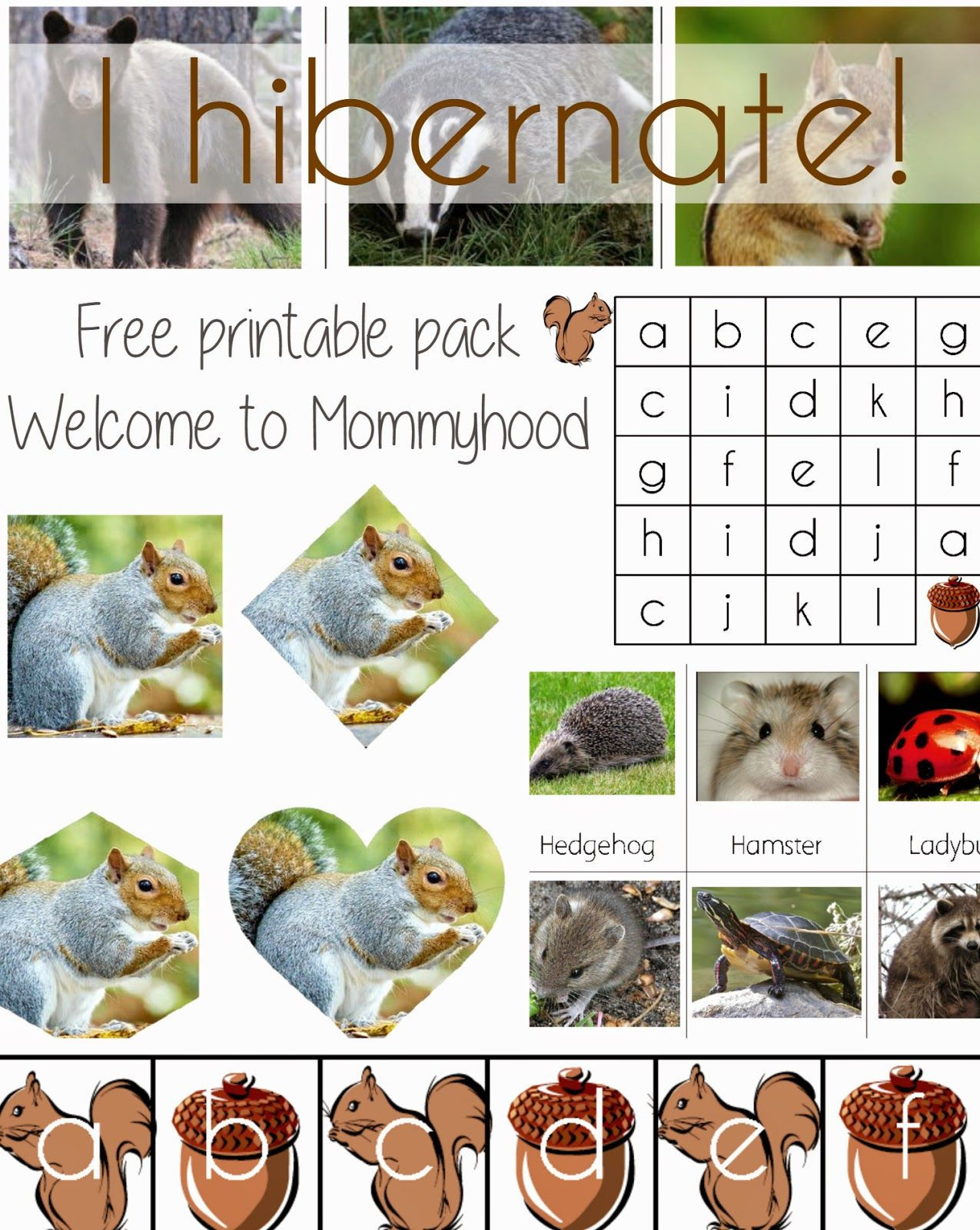 "Hibernation Worksheets for Preschool I Hibernate"" Free Printable Pack From Wel E to Mommyhood"