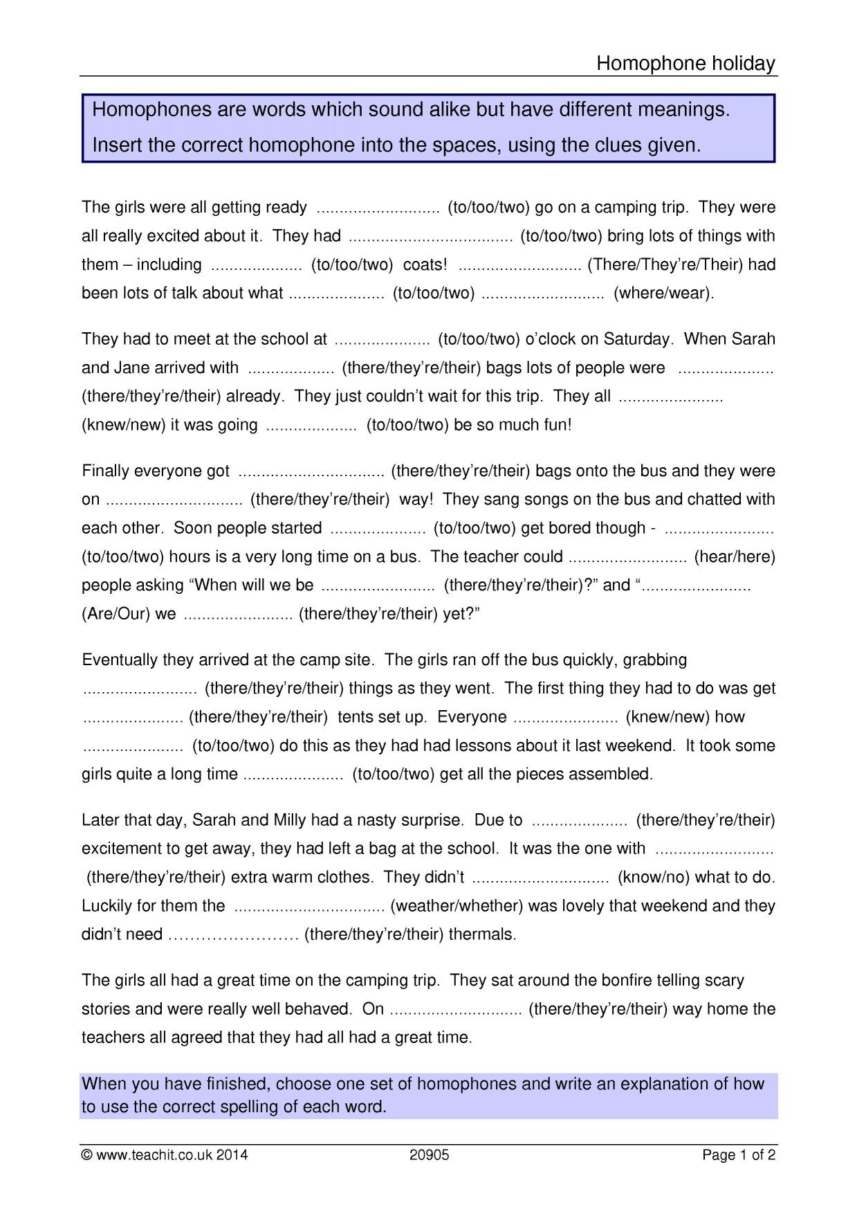 Homophone Worksheets Middle School Grammar Worksheet Homonyms