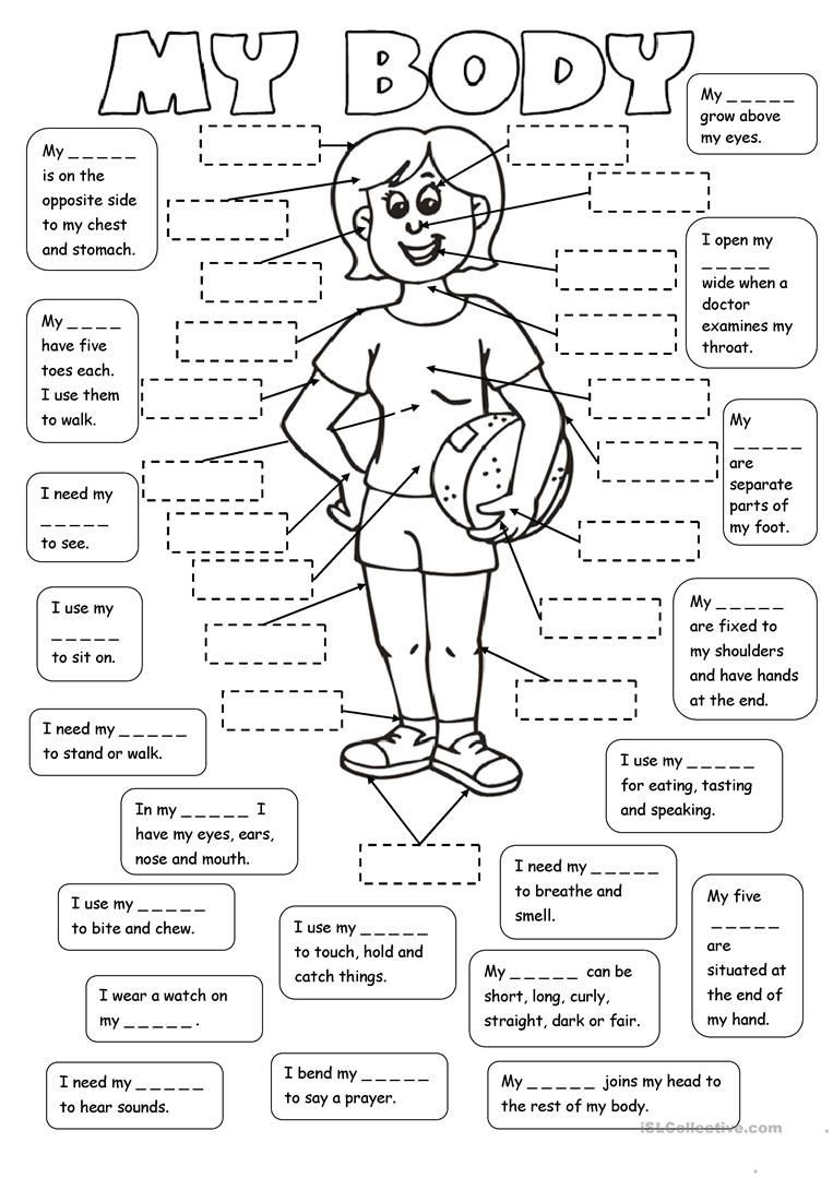 Human Body Worksheets Middle School My Body 2 Tasks Worksheet Free Esl Printable Worksheets