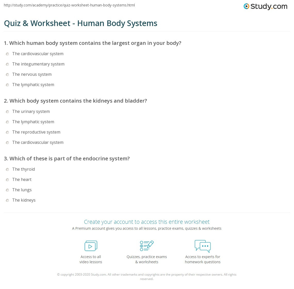 Human Body Worksheets Middle School Quiz & Worksheet Human Body Systems