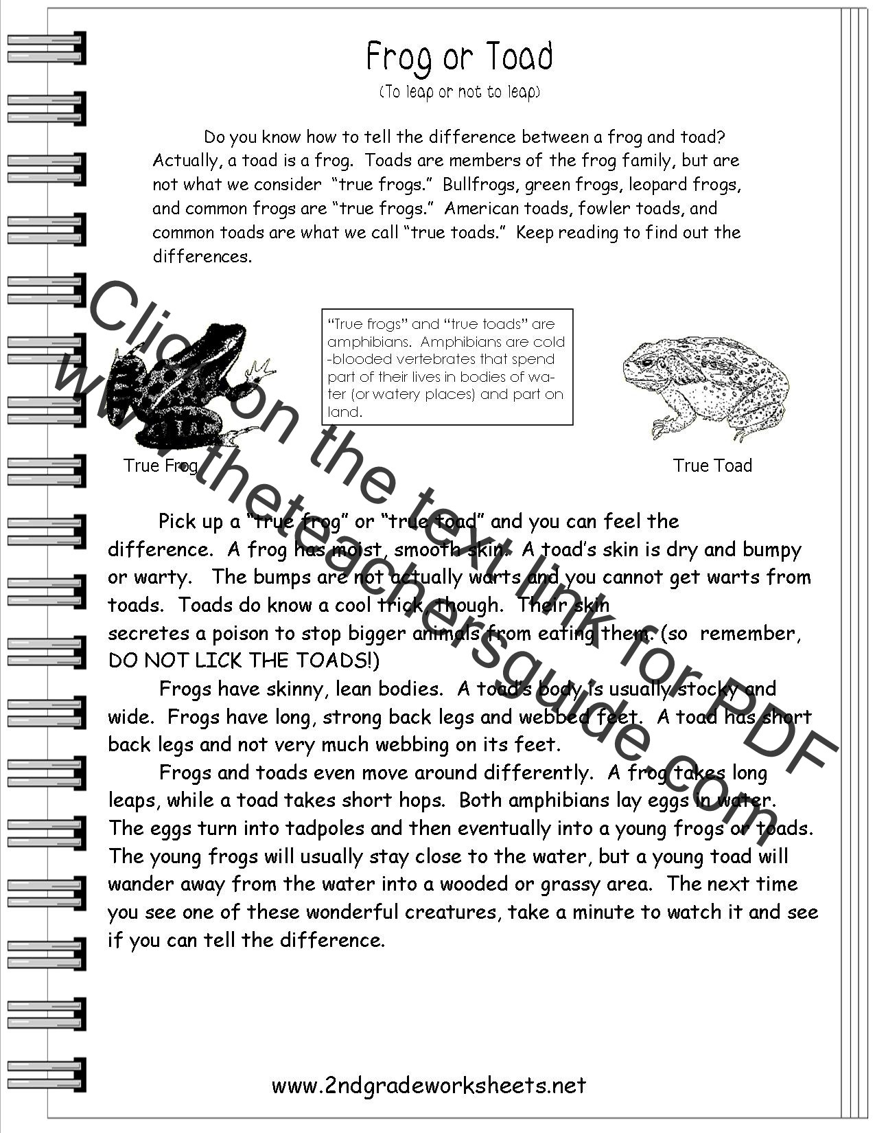 Informational Text Worksheets Middle School 5th Grade Fiction Reading Passages