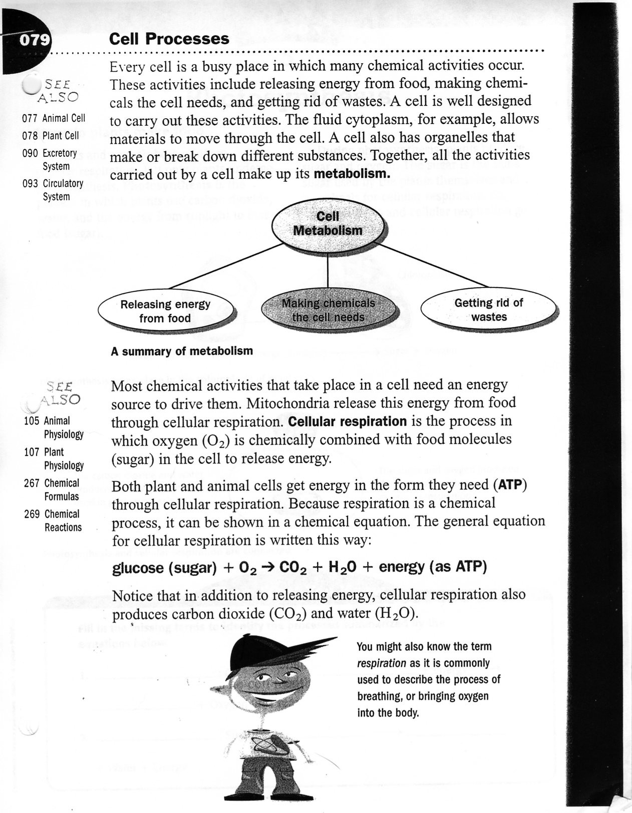 Middle School Science Worksheets Pdf Life Science Easy Worksheets Middle School Cellprocessesws