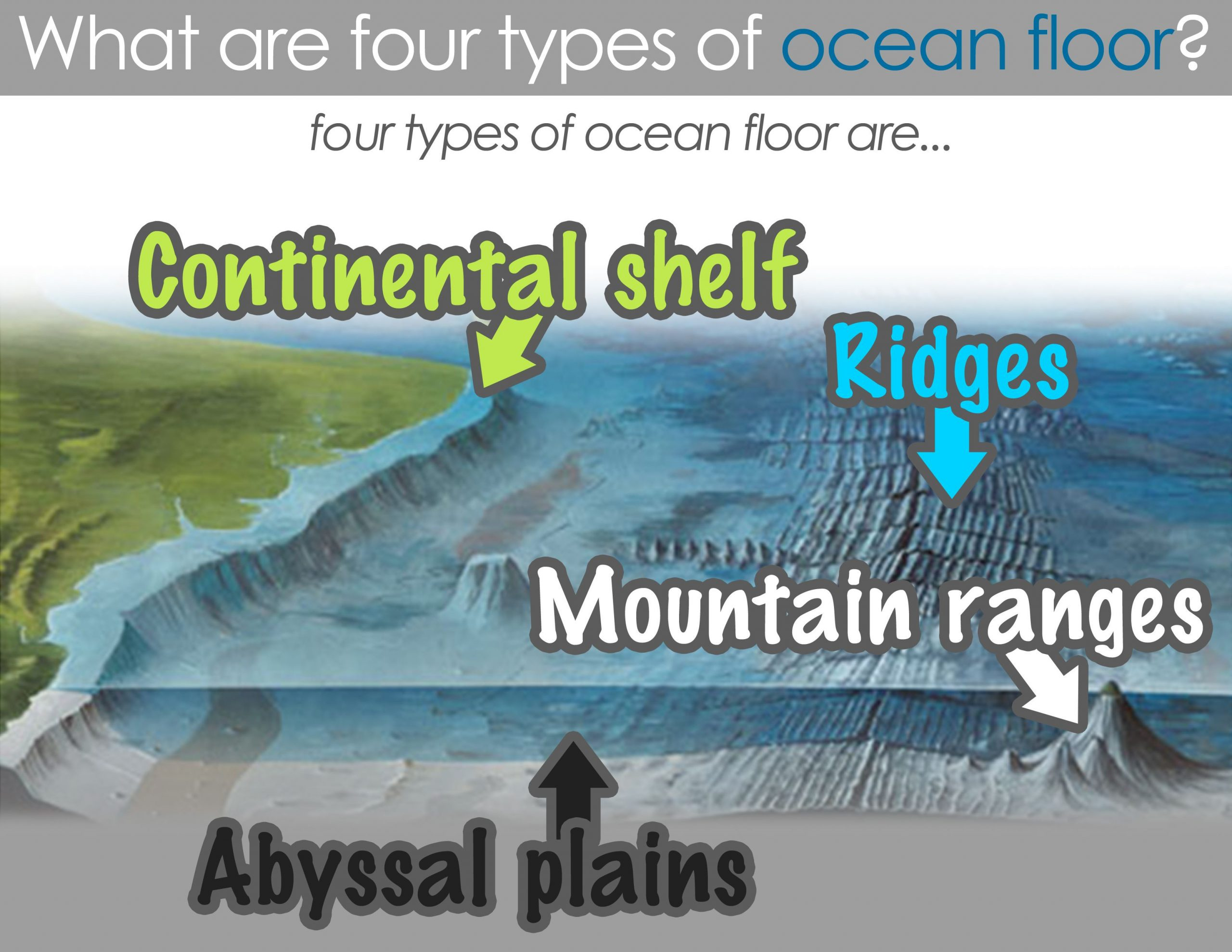 Ocean Floor Worksheets 5th Grade Ocean Floor Worksheet 6th Grade