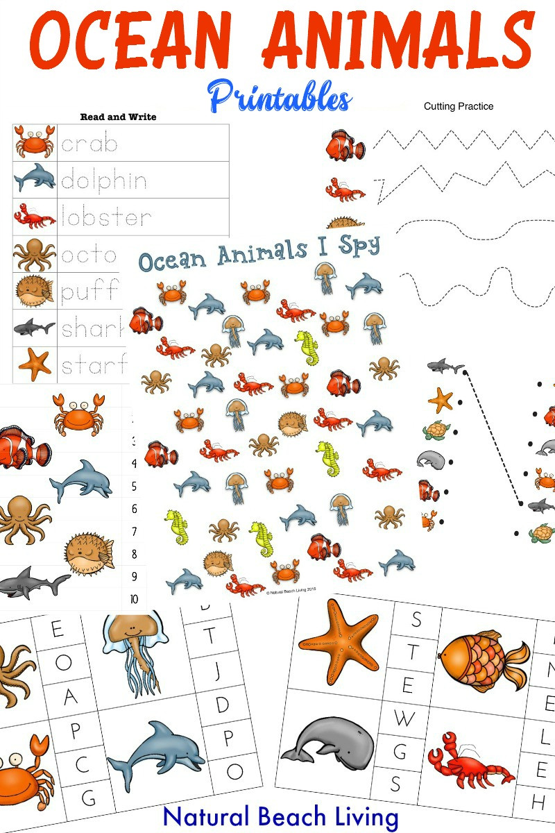 Ocean Worksheets for Preschool the Best Ocean Animals Preschool Activities and Printables