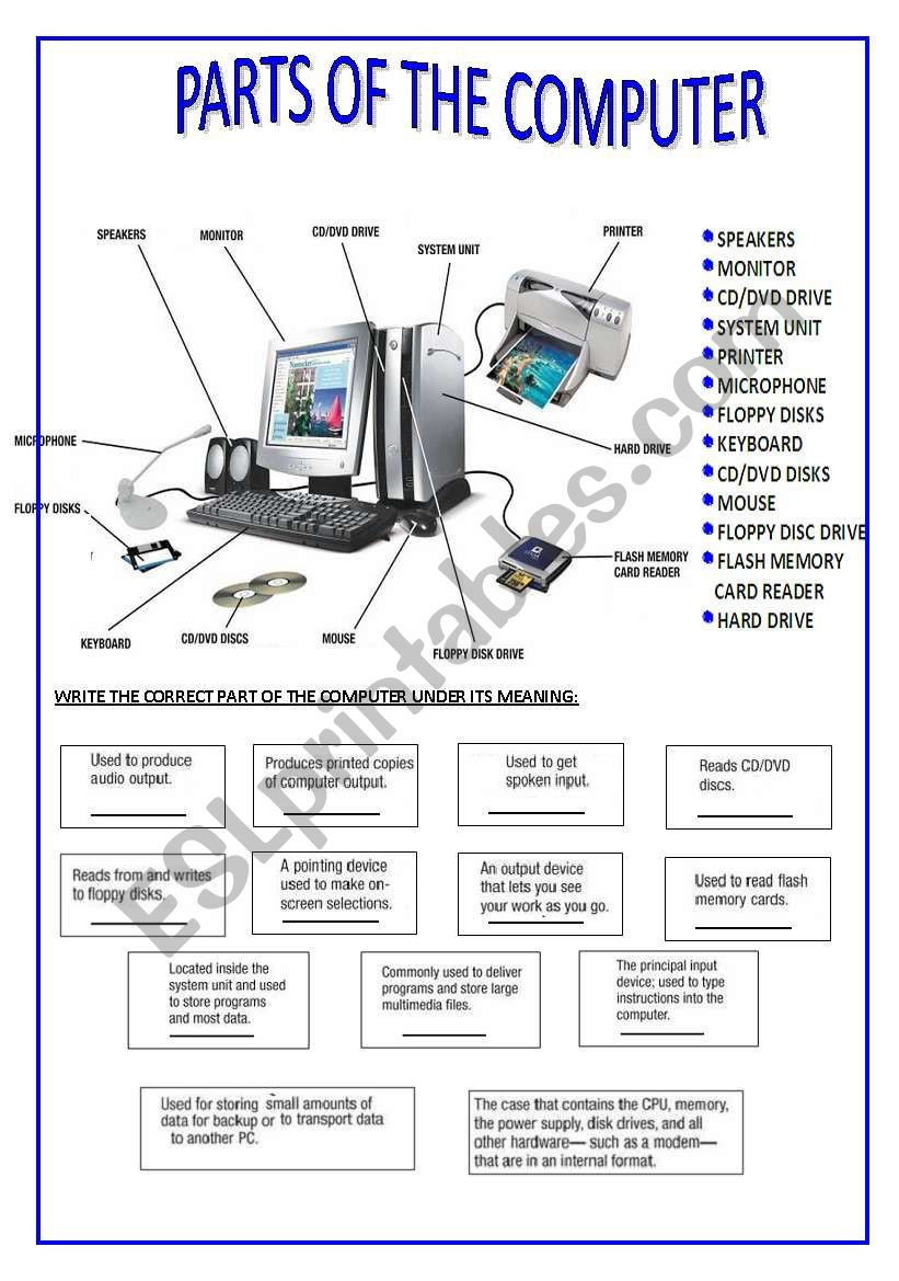 Printable Computer Worksheets Parts Of the Puter Esl Worksheet by Silvina Joaquina