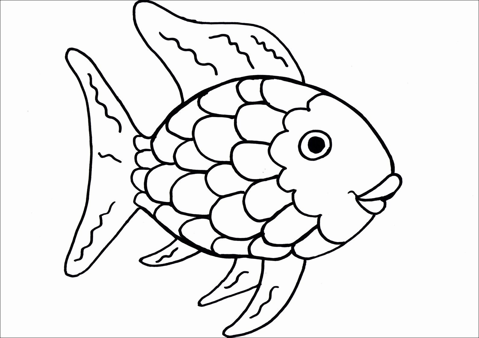 Rainbow Fish Printable Worksheets Activity Coloring Sheets Best Rainbow Fish Printable
