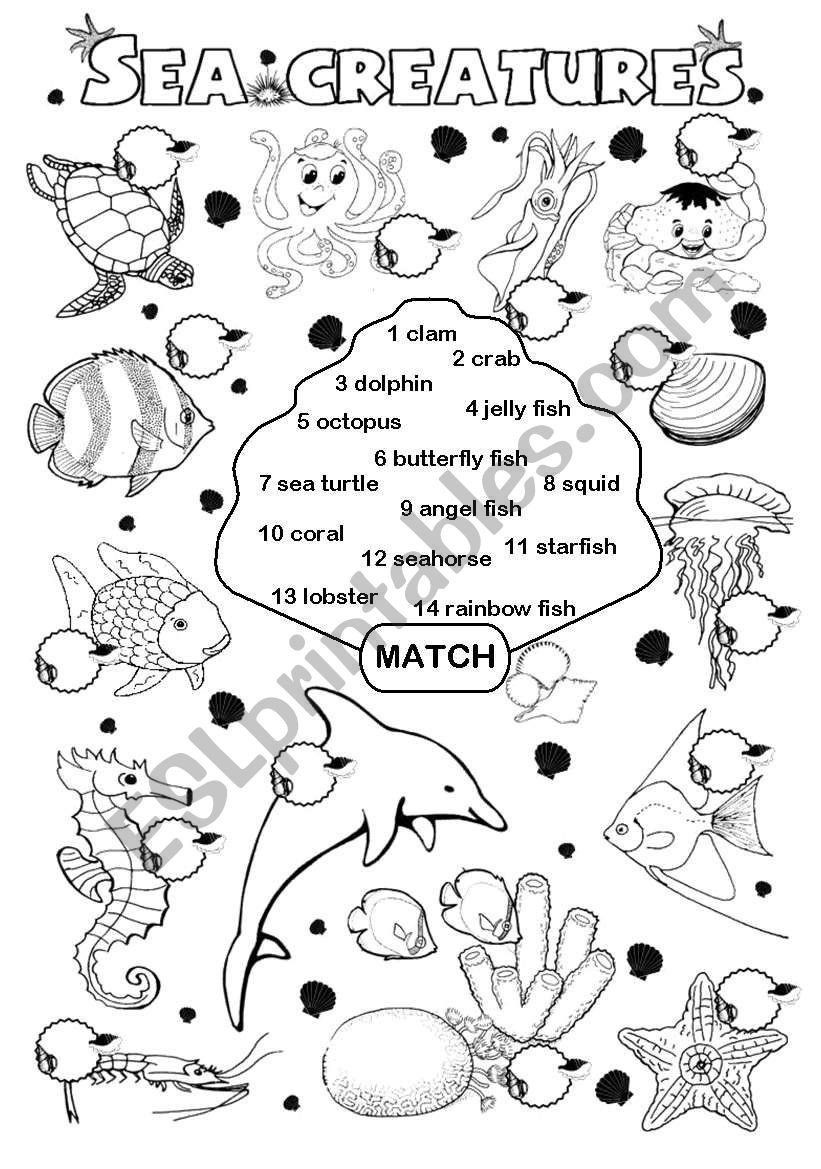 Rainbow Fish Printable Worksheets Pin On Printable Worksheet Template