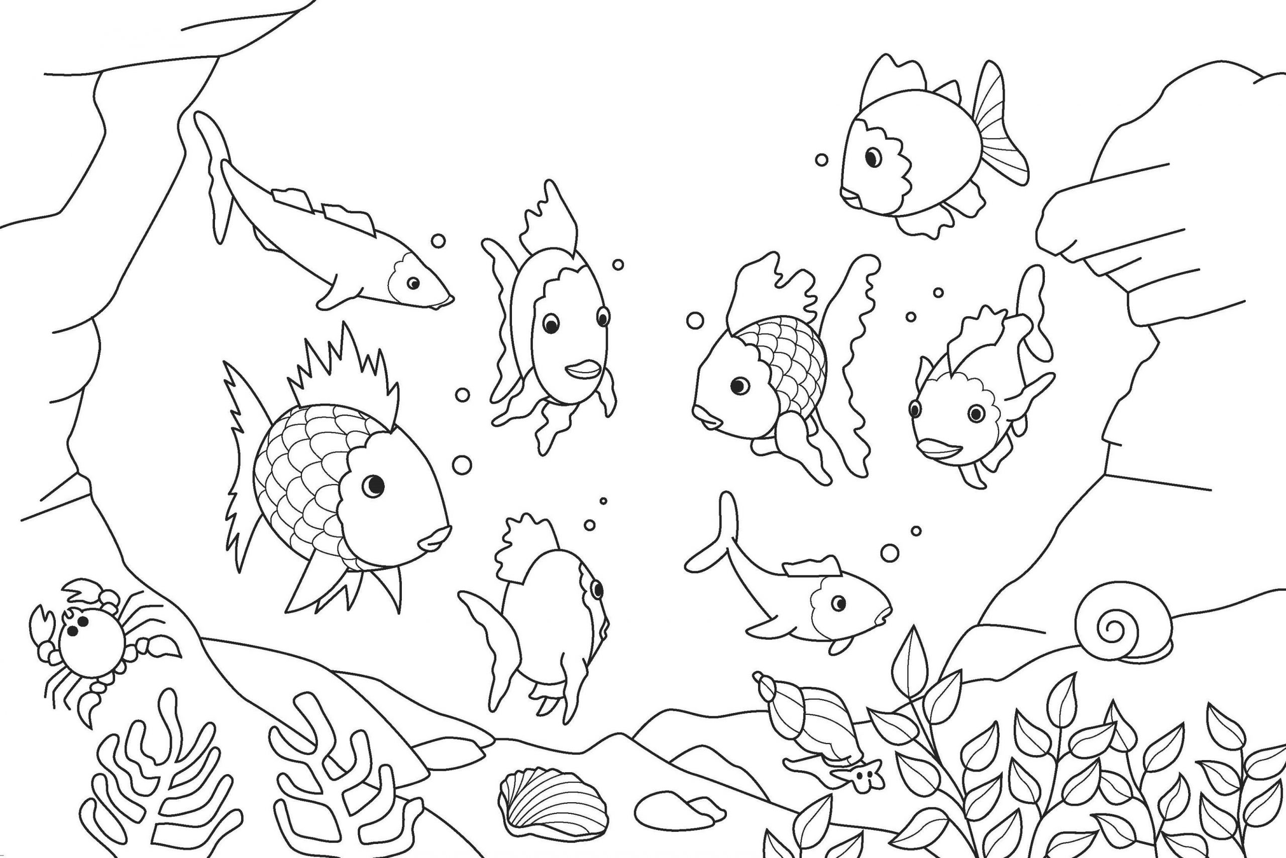 Rainbow Fish Printable Worksheets Printable Fish Coloring Pages for Kids