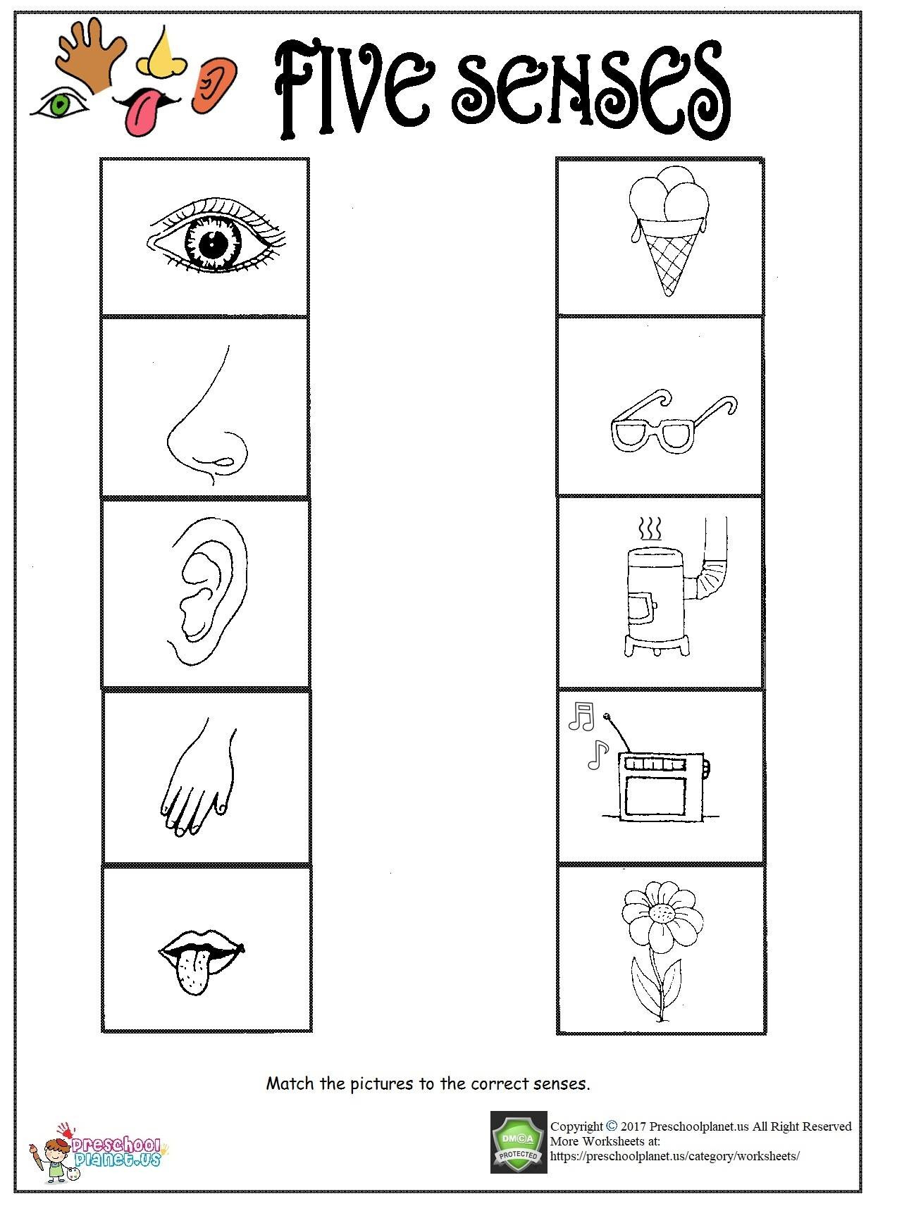 Recycle Worksheets for Preschoolers Printable Five Senses Worksheet – Preschoolplanet