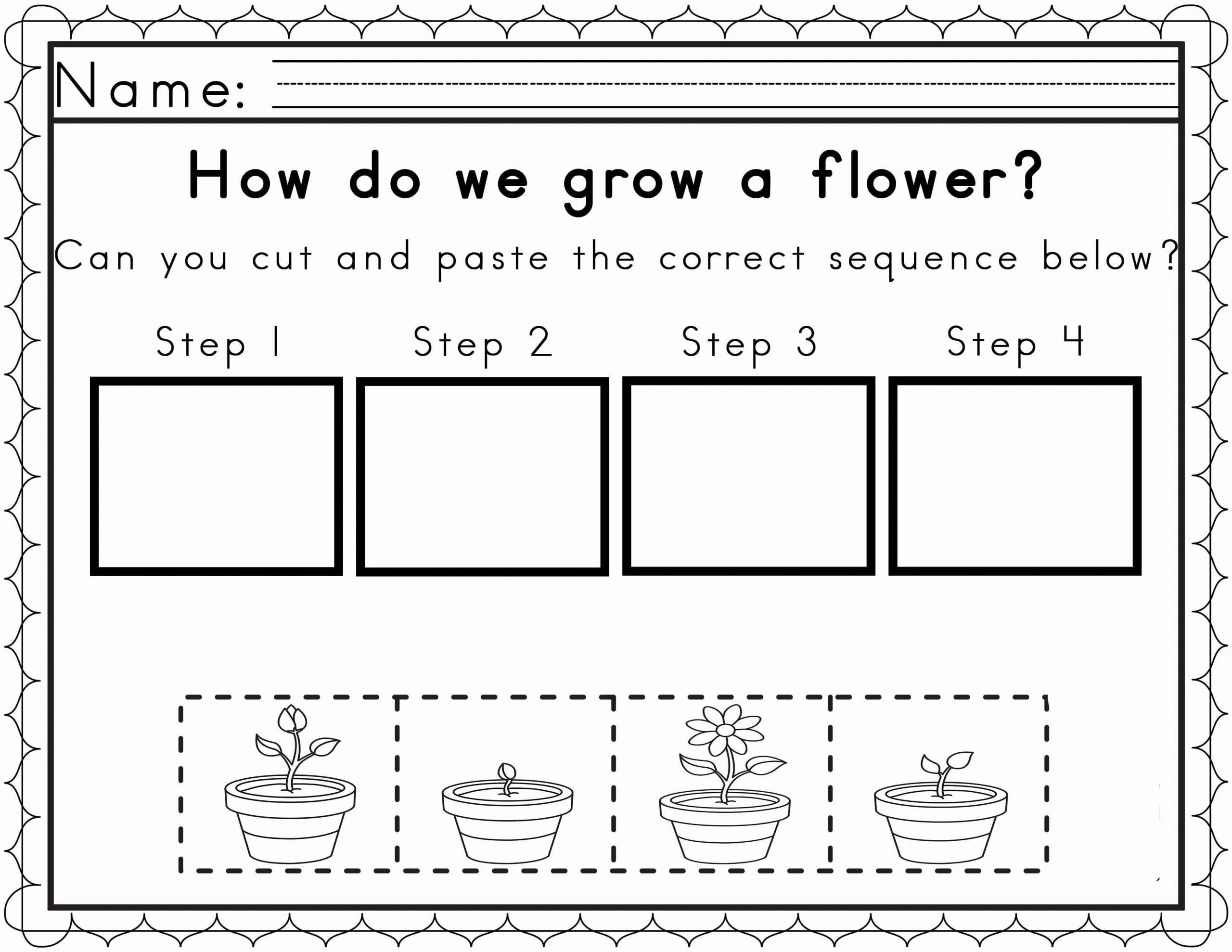 Sequence Worksheets for 3rd Grade Plant Life Cycle Worksheet 3rd Grade