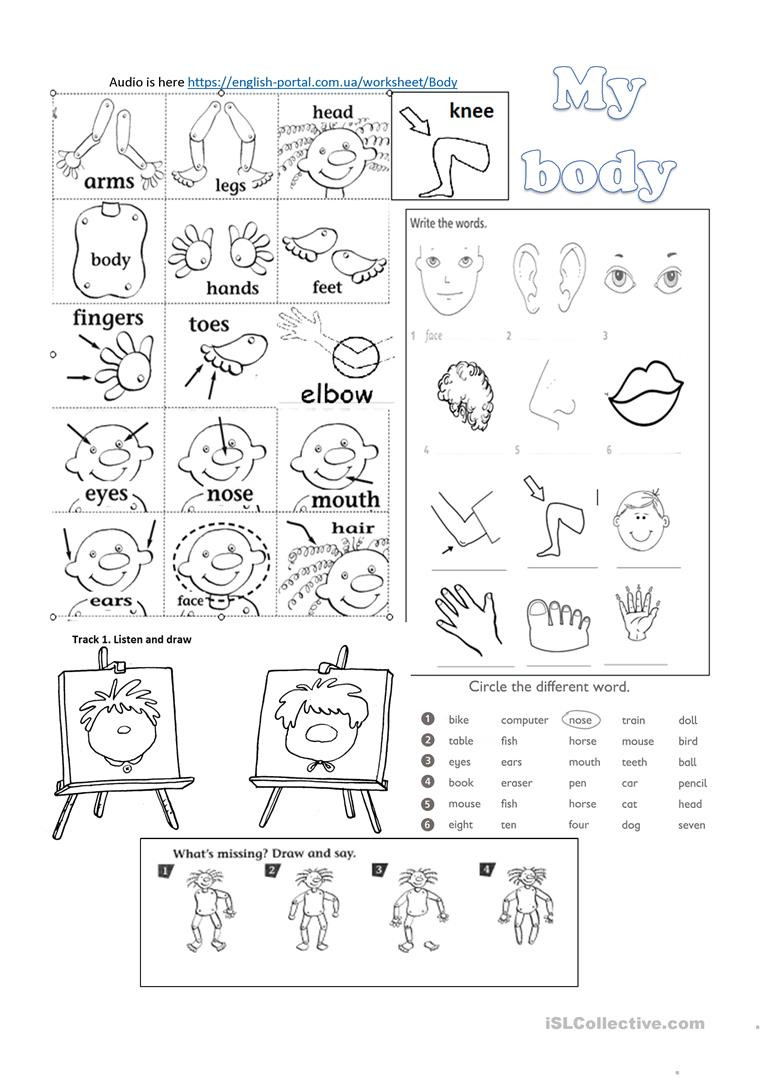 Sign Language Printable Worksheets My Body Worksheet with Listening Tasks English Esl