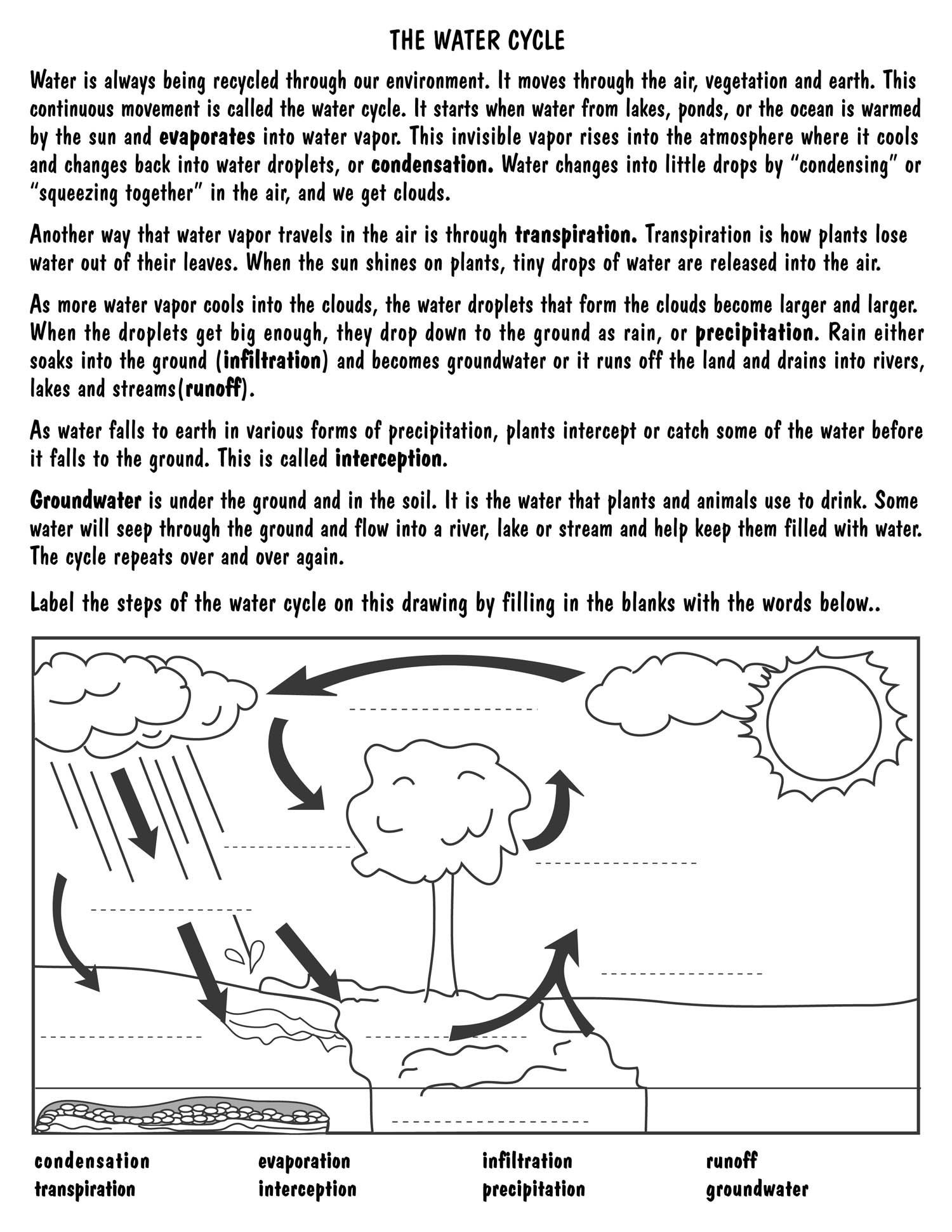 Water Cycle Worksheets 2nd Grade Printable Water Cycle Diagram