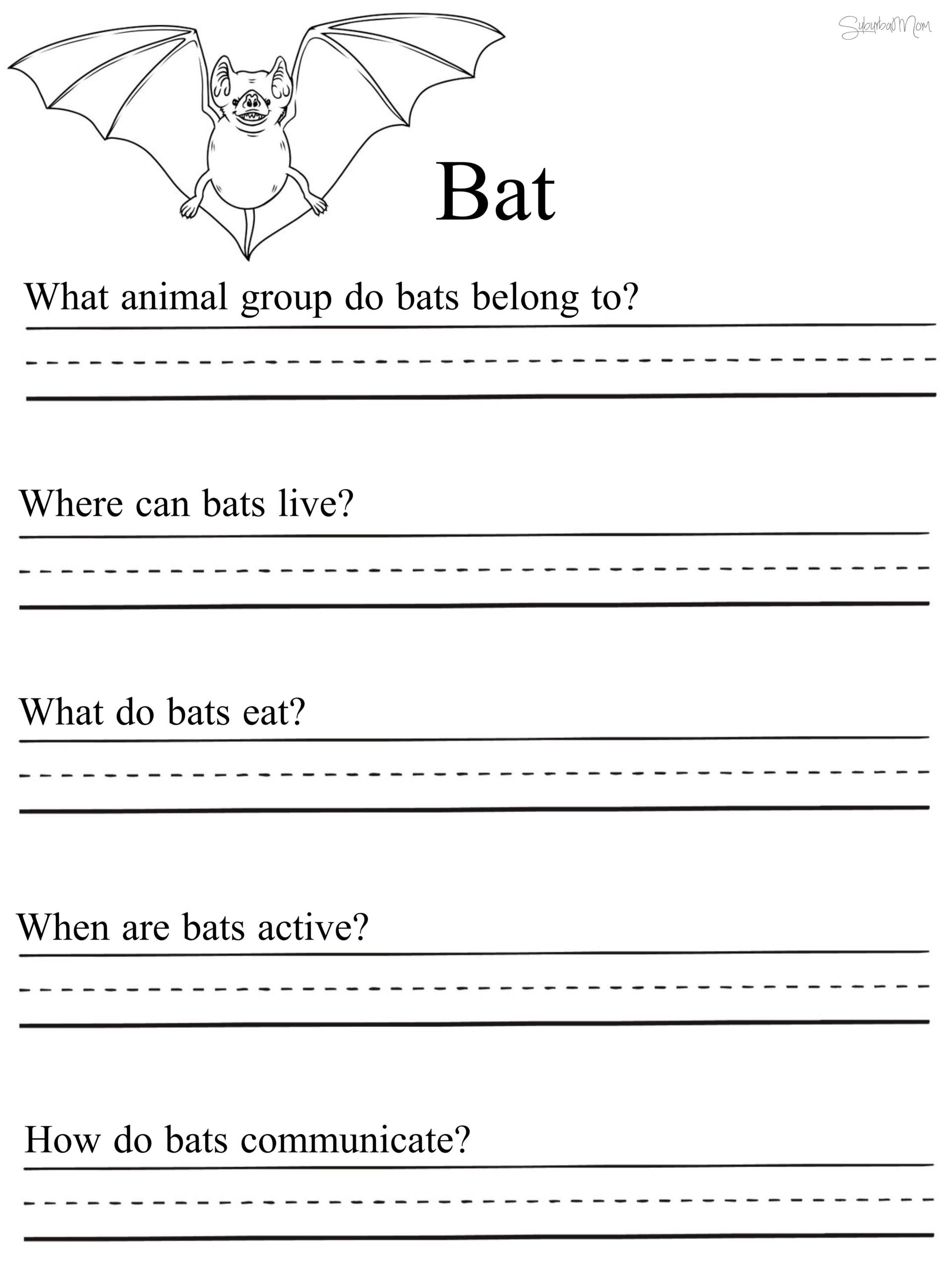 1st Grade social Studies Worksheets Math Worksheet 43 Stunning 1st Grade Science Worksheets