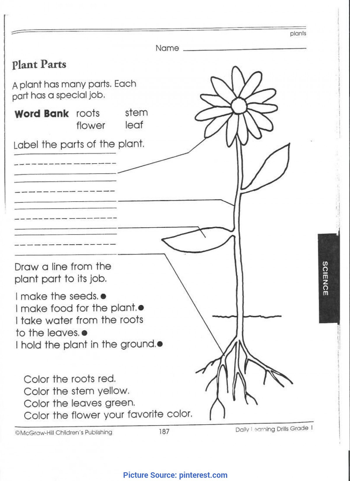 3rd Grade Science Worksheets Best Third Grade Science Activities 1st Worksheets Picking