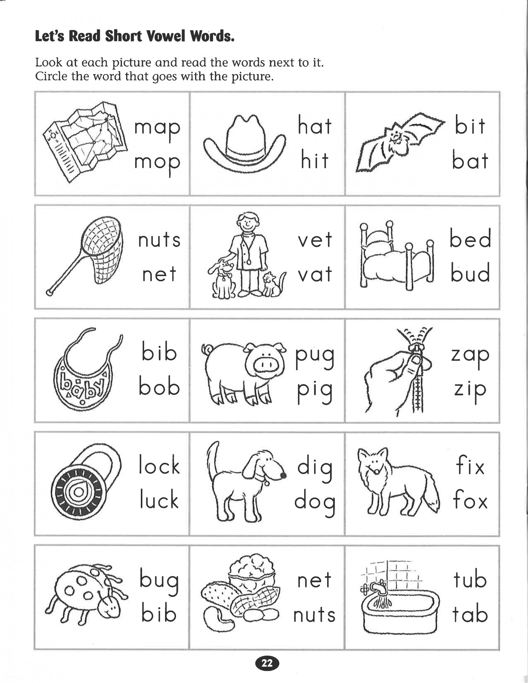 3rd Grade Science Worksheets Worksheet Short Tales Worksheet for Kindergarten Colors
