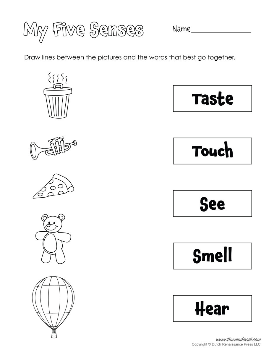 5 Senses Worksheet Preschool Printable 5 Senses Worksheet Tim S Printables