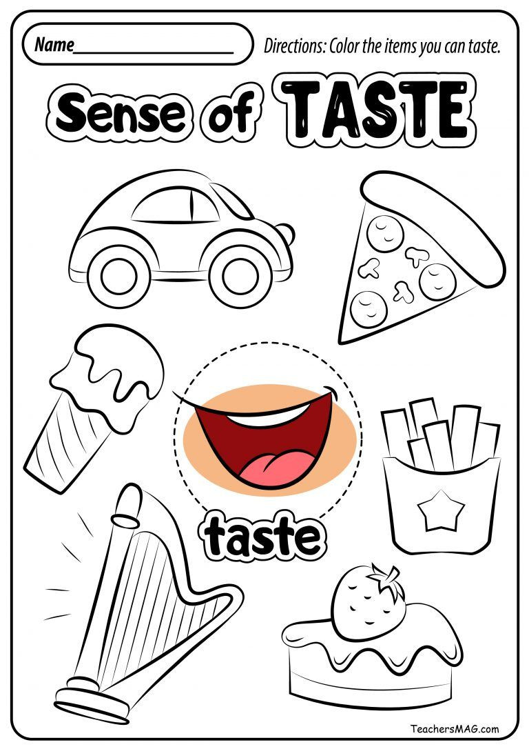 5 Senses Worksheets Preschool Free Five Senses Worksheets