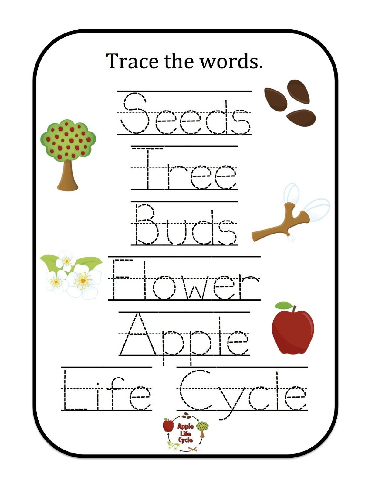 Apple Worksheets Preschool Apple Trace the Words 1 236—1 600 Pixels