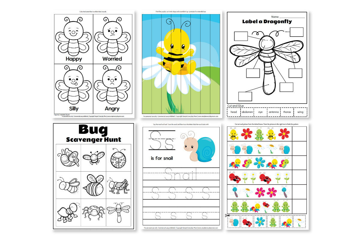 Bug Worksheets for Preschool Printable Preschool Bug Activities for Learning & Fun