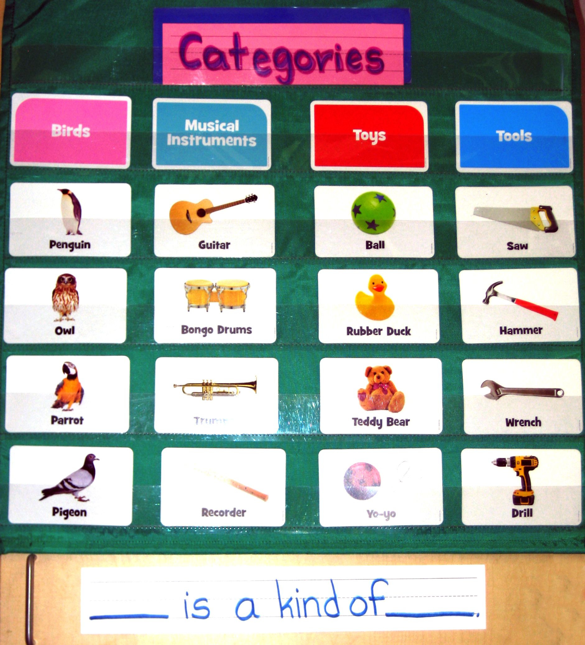 Categorizing Worksheets for 1st Grade Classifying and Categorizing are First Grade Standards