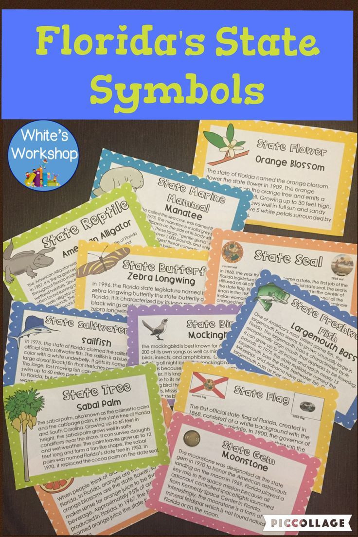 Florida History Worksheets 4th Grade Florida Symbols for Florida Fourth Graders Cards and