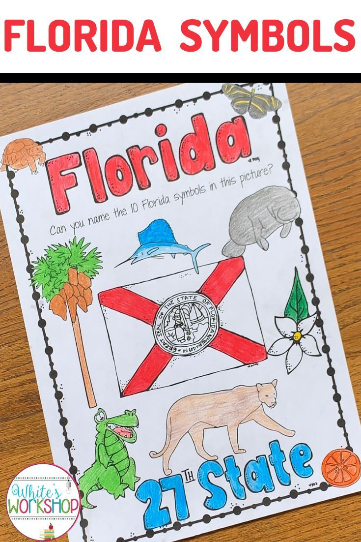 Florida History Worksheets 4th Grade Florida Symbols Worksheet In 2020