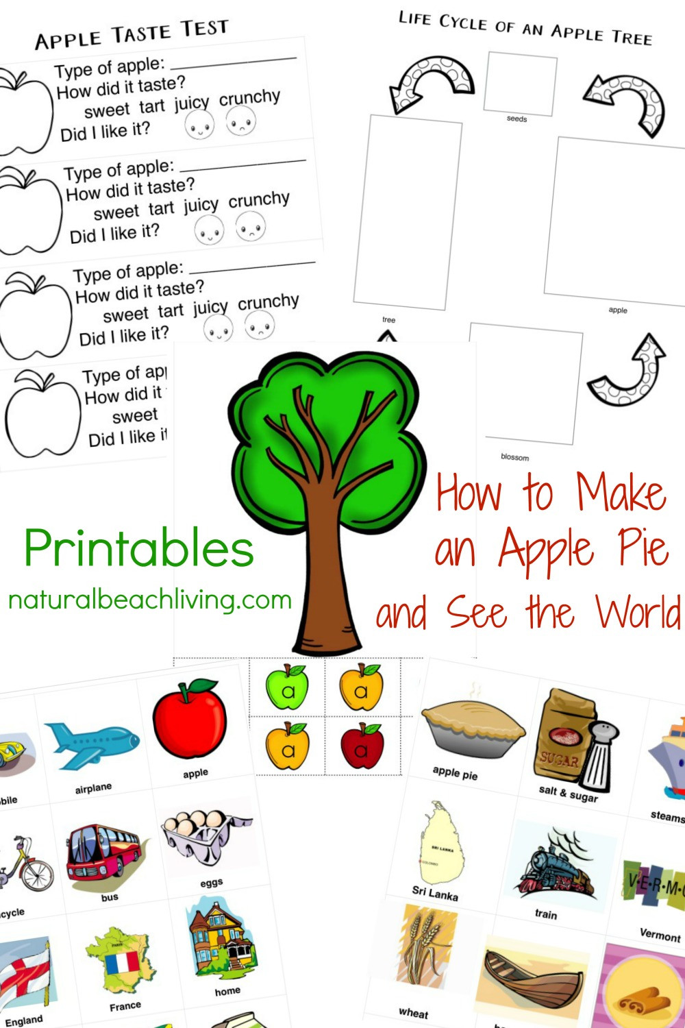 Free Printable Apple Worksheets 30 Free Apple Printables for Preschool and Kindergarten