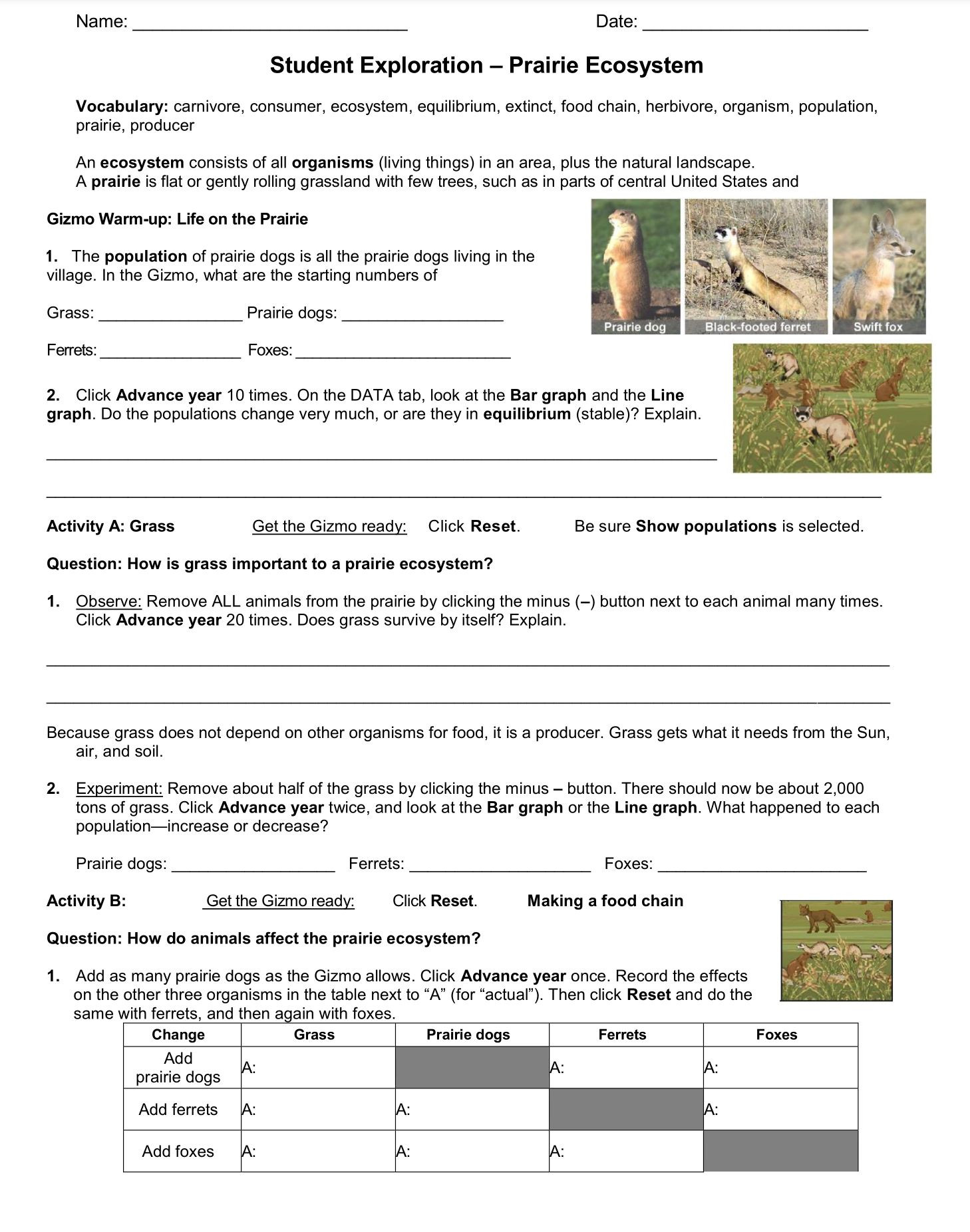 Free Printable Ecosystem Worksheets Ecosystem Student Exploration Worksheet Go to Explore