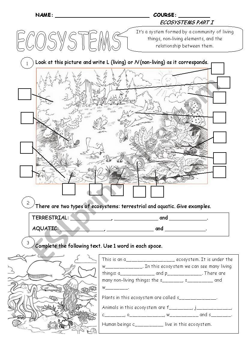 Free Printable Ecosystem Worksheets Ecosystems Part 1 Esl Worksheet by Cristina84