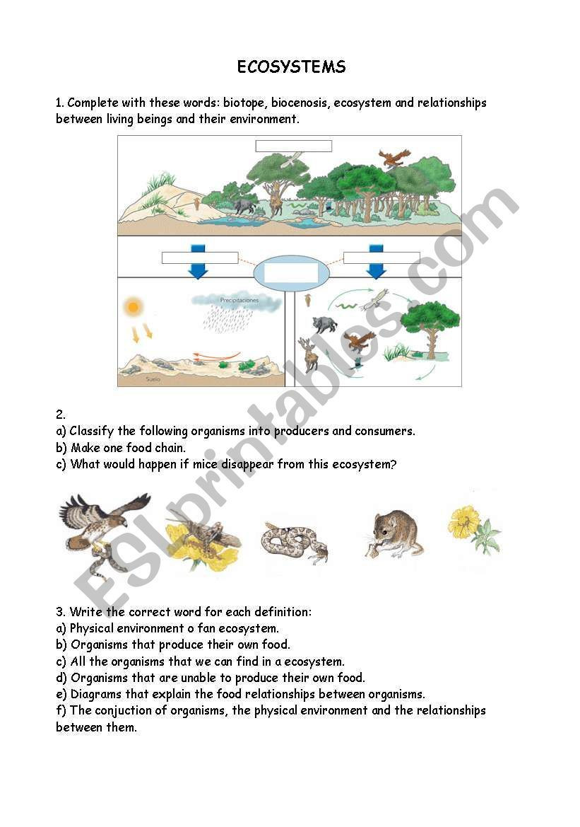 Free Printable Ecosystem Worksheets Pin On Classroom Behavior