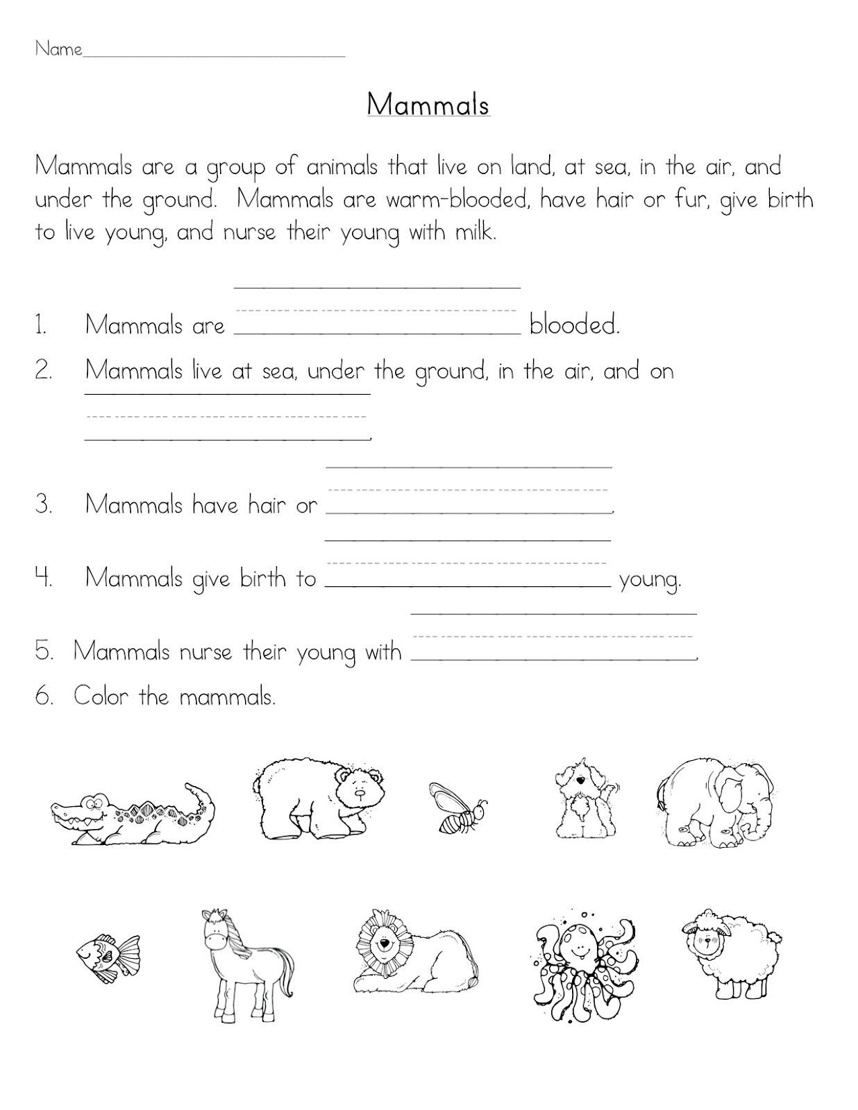 Mammals Worksheets for 2nd Grade Mammals