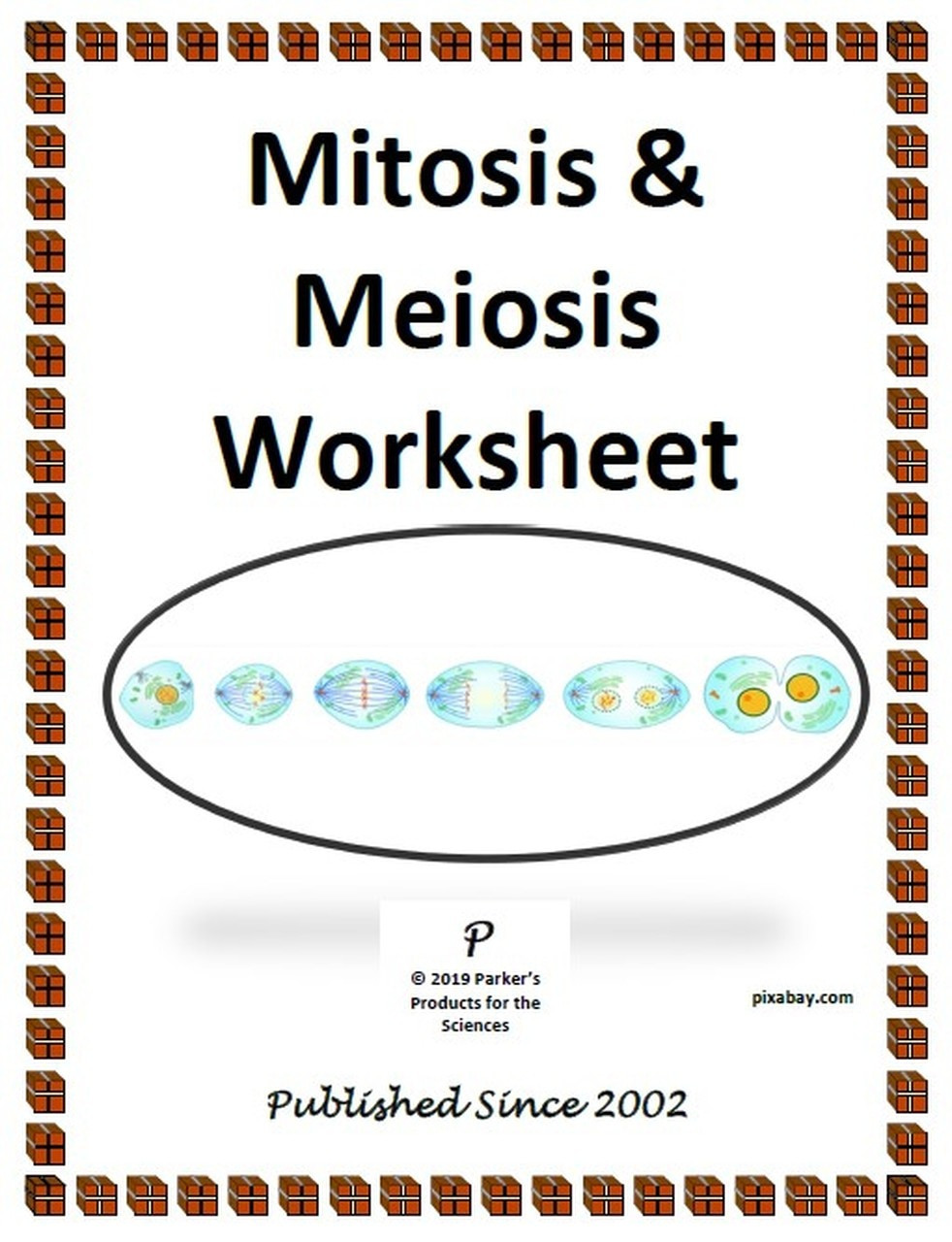 Meiosis Worksheet Middle School Mitosis & Meiosis Worksheet