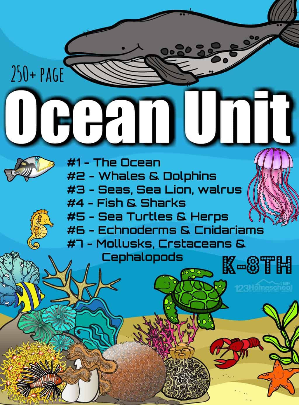 Ocean Worksheets for 2nd Grade Free Ocean Worksheets for Pre K Kindergarten Grade 1 & 2