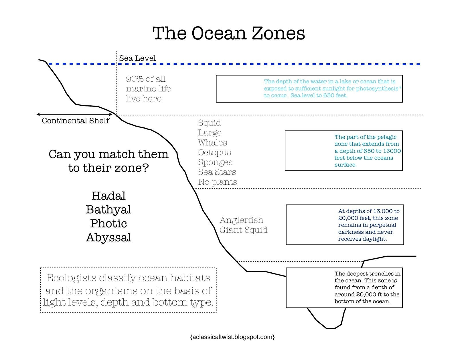 Ocean Worksheets for 2nd Grade Ocean Zones Printable