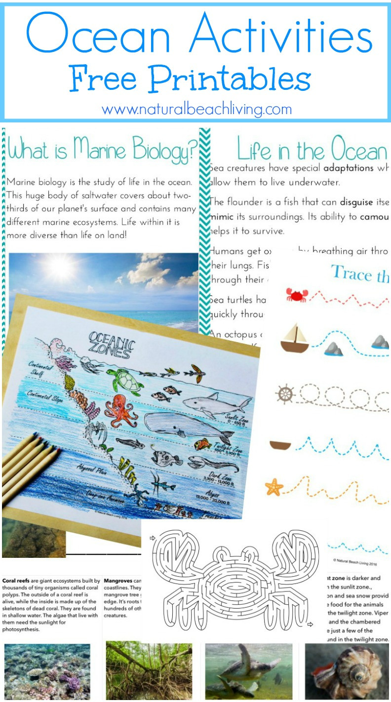 Ocean Worksheets for 2nd Grade the Best Ocean Unit Study for Kids Ocean Lesson Plans and