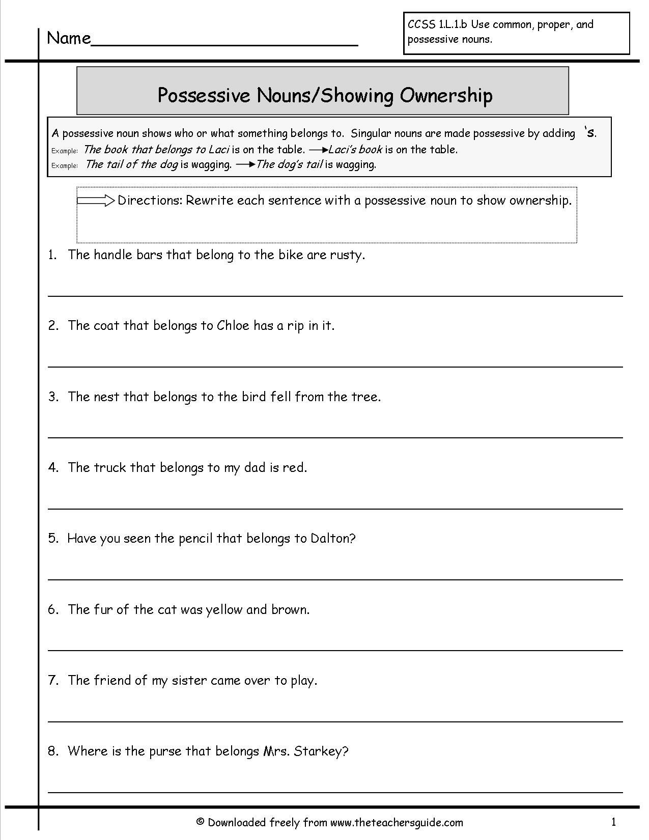 Possessive Nouns Worksheets 1st Grade Possessive Nouns Worksheet