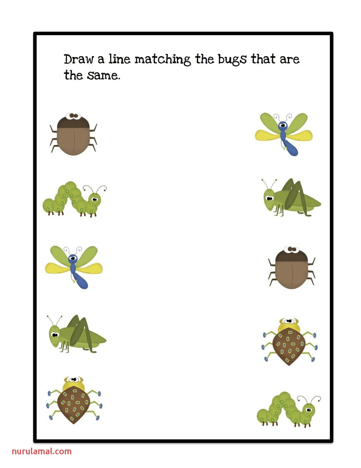 Preschool Bug Worksheets Pin On Preschool Prek