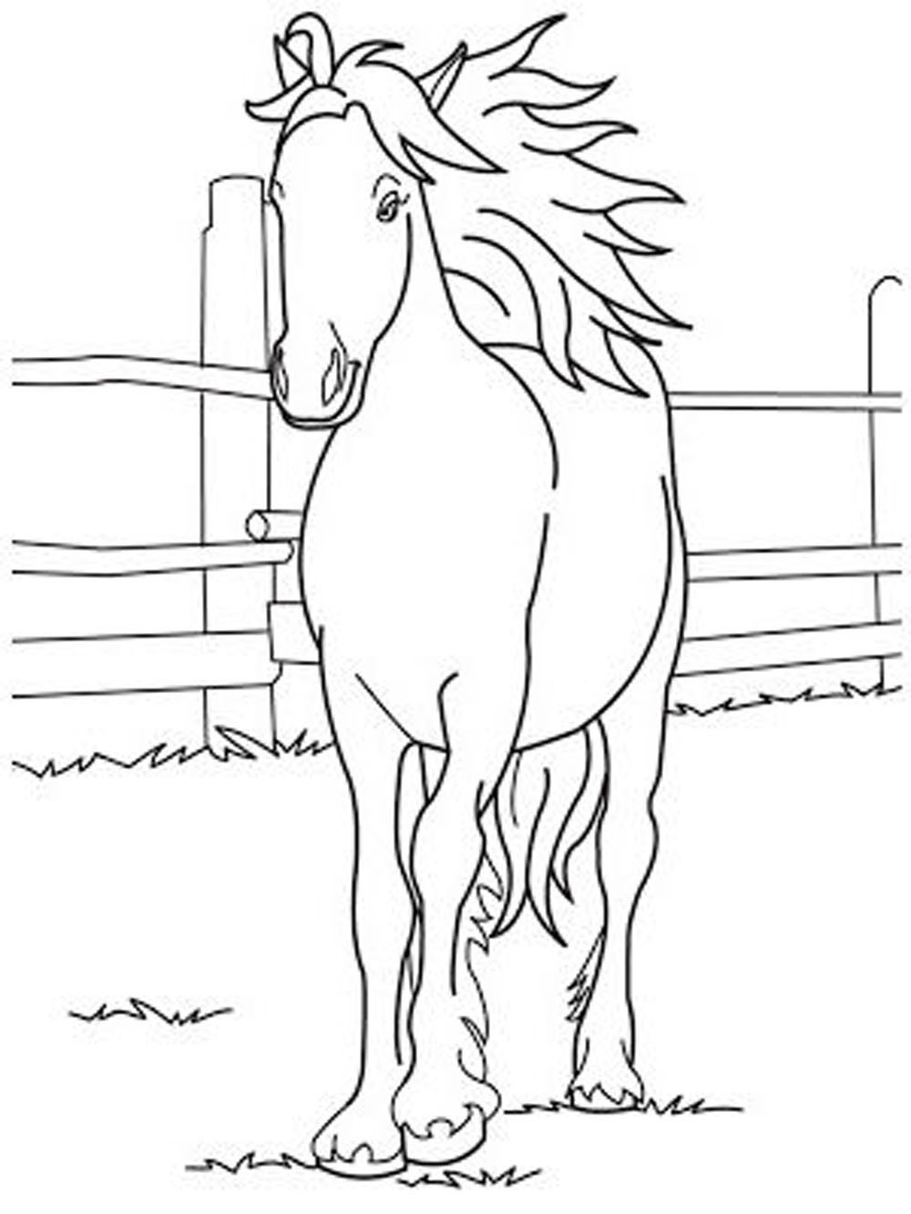 Printable Horse Anatomy Worksheets Stunning Horse Coloring Pages forschoolers Picture